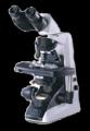 Microscopio-Nikon